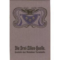 Die Drei-Lilien-Quelle, Geschichte einer Wiesbadener Thermalquelle, ebook