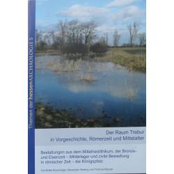 Der Raum Trebur in Vorgeschichte, Römerzeit und Mittelalter (2013)